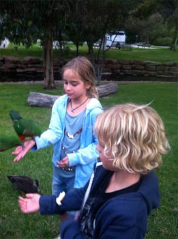 Kids Feeding the Birds