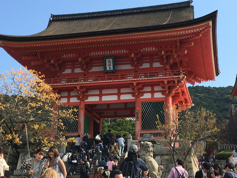 7D japan itinerary for a family trip